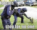 LOLcats stop for no one